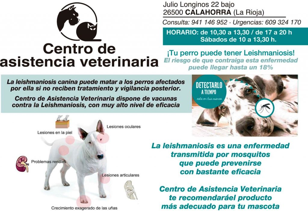 anuncio leishmaniosis Centro Asist. Veterinaria