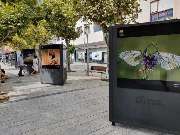 Exposición de naturaleza en Calahorra