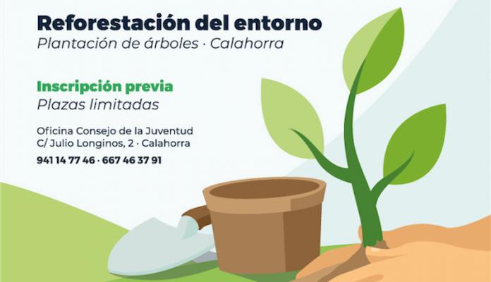 reforestación Reto Verde
