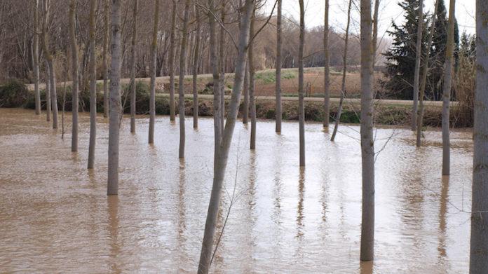 crecida Ebro moderada