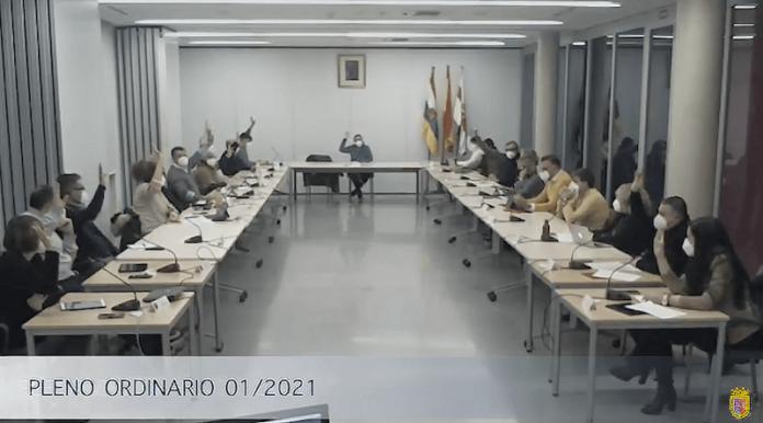 Pleno 25-1-2021