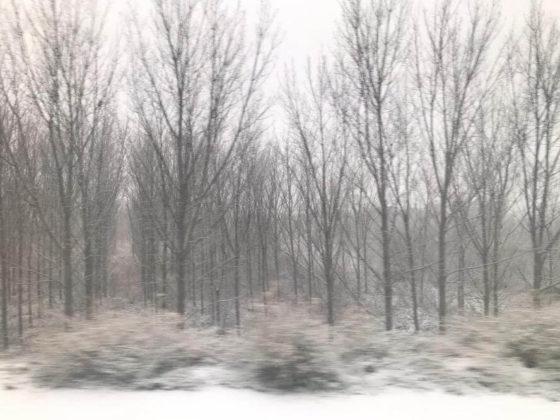 nieve paisaje 1