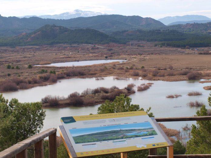 Humedal de La Degollada