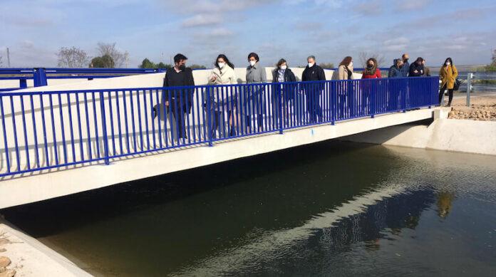 visita puente canal de Lodosa copia