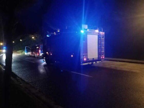 bomberos derribo pino tormenta parque del Cidacos copia