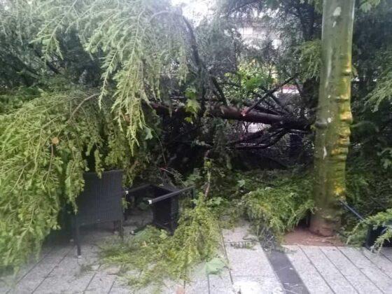destrozos tormenta en Mercadal 2