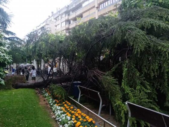 destrozos tormenta en Mercadal 4