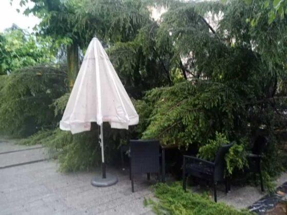 destrozos tormenta en Mercadal 6