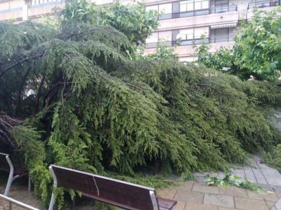 destrozos tormenta en Mercadal 8