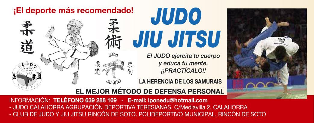 banner judo teresianas