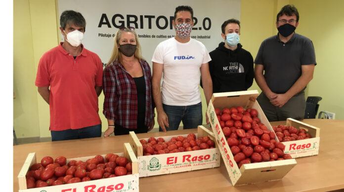 Agritom 2,0 conclusiones tomate copia